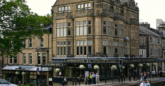 Harrogate, North Yorkshire, Property Guide