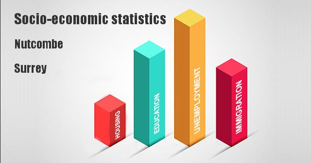Socio-economic statistics for Nutcombe, Surrey