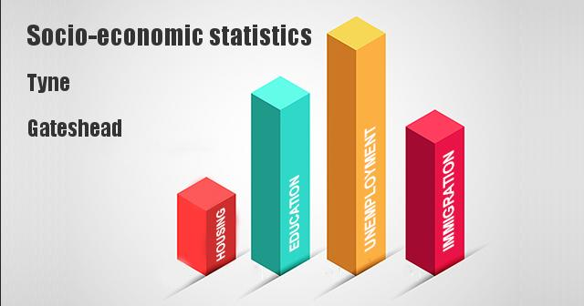 Socio-economic statistics for Tyne, Gateshead